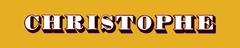 Logo NPSI