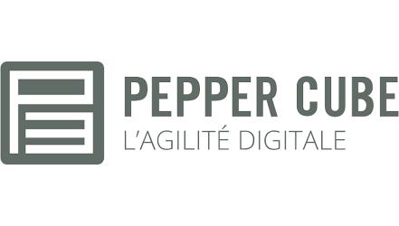 Logo Pepper Cube