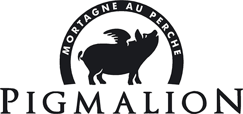 Logo Pigmalion