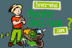 Logo Plantez Chez Nous