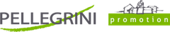 Logo Promotion Pellegrini