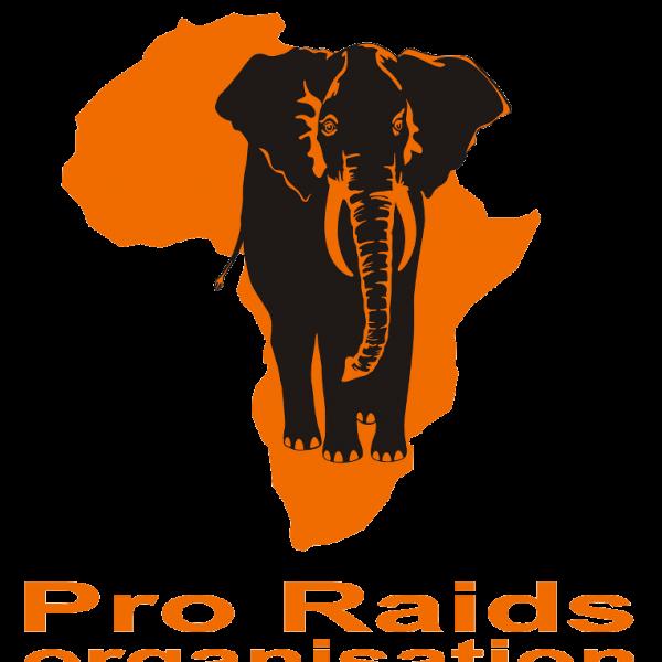 Logo Pro Raids Organisation