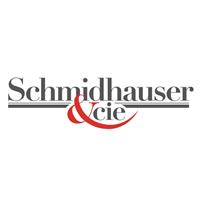 Logo Schmidhauser