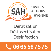 Logo Services Actions Hygiene