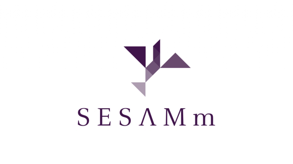 Logo Sesamm