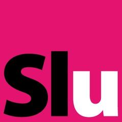 Logo Sound Light Up Slu