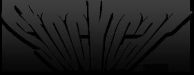 Logo Stock Car