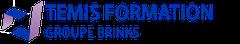 Logo Temis Conseil et Formation