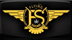 Logo Flying Safari