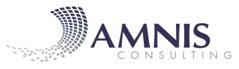 Logo Amnis Consulting