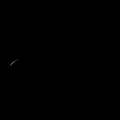 Logo Black & Spicy