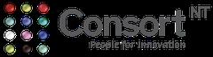 Logo Groupe Consort Informatique