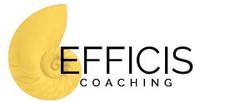 Logo Efficis