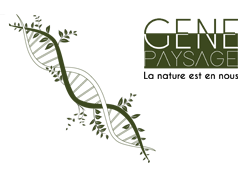 Logo Gene Paysage