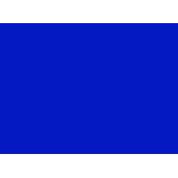 Logo Language Studies International