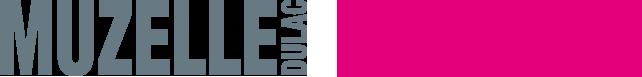 Logo Muzelle Dulac Hasson