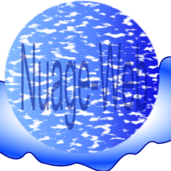 Logo Nuage Web
