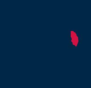 Logo Rhizome It