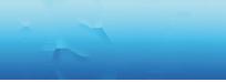 Logo Rsw Net