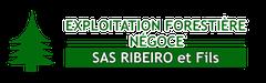 Logo Ribeiro & Fils