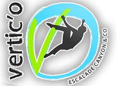 Logo Vertic O