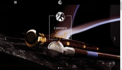 Site internet de Cannes Fayet Se