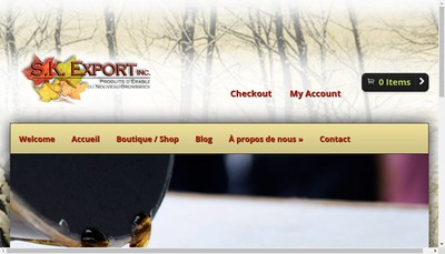Site internet de Sk-Export