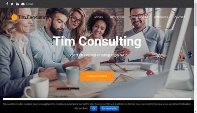 Site internet de TIM Consulting