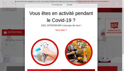 Site internet de SASU 1001 Interim'Air