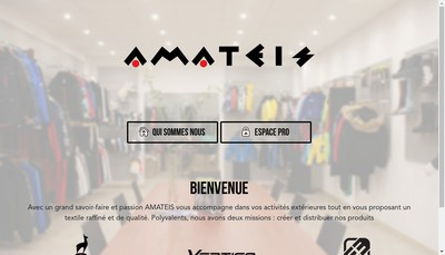 Site internet de Amateis