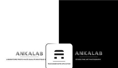 Site internet de Ankalab