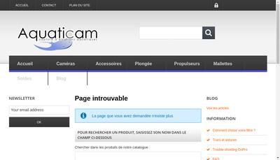 Site internet de IC Electronics