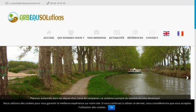 Site internet de Arbeausolutions