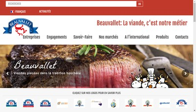 Site internet de Hapi France