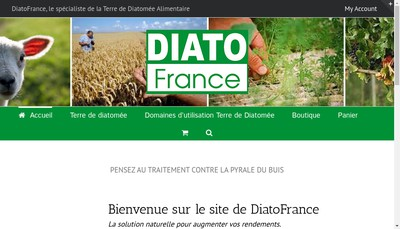 Site internet de Diatofrance