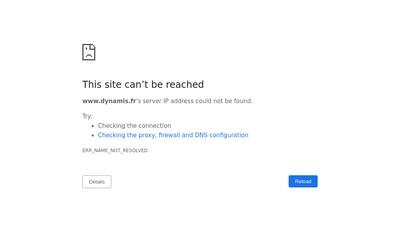 Site internet de Groupe Dynamis