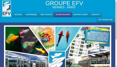 Site internet de Groupe Efv