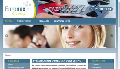 Site internet de Euronex Consulting
