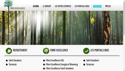 Site internet de Fibre Excellence Saint-Gaudens SAS