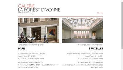 Site internet de Galerie Marie Helene de la Forest Divonne