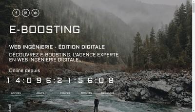 Site internet de E-Boosting / Tropical Woods