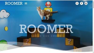 Site internet de Roomer