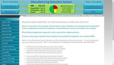 Site internet de MES Consulting