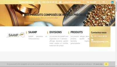 Site internet de Les Comptoirs d'Or de Guyane