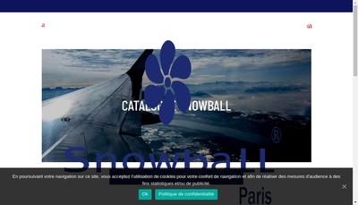 Site internet de Snow Ball