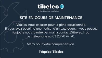 Site internet de Tibelec SA