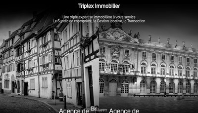 Site internet de Triplex