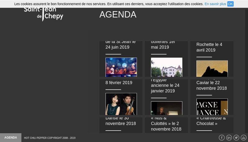 Capture d'écran du site de Societe Domaine de St Jean de Chepy