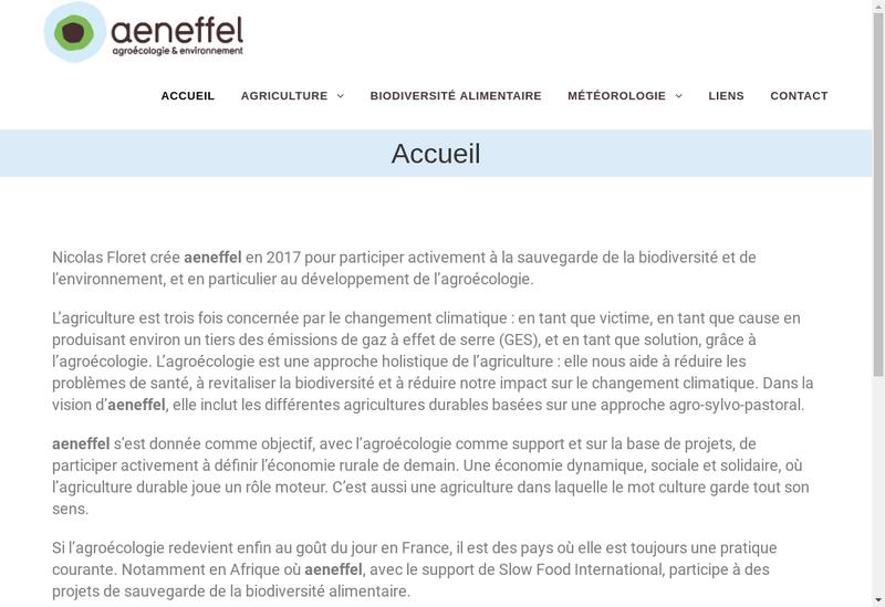 Capture d'écran du site de Aeneffel