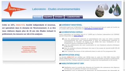 Capture d'écran du site de Analy Co